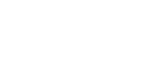 Avid logo in white