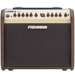 Fishman Loudbox Mini 60 Watt Acoustic Guitar Amplifier w/ Reverb & Chorus